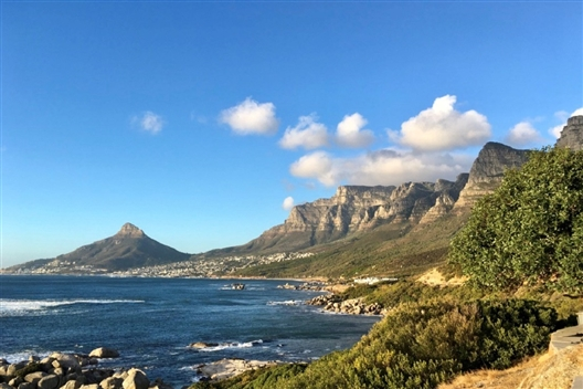 Cape Peninsula Tour: Full Day